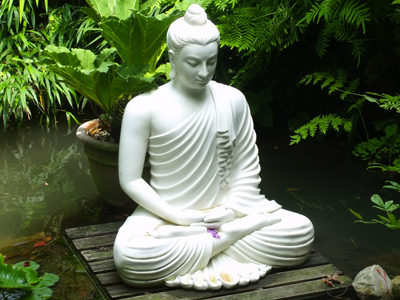 buddha-lotus-pond